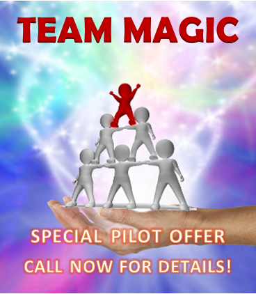 TEAM MAGIC team alignment pilot offer
